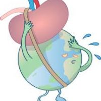 The global burden of chronic kidney disease