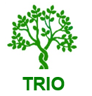 TREC partners with Transplant Recipients International Organization to launch the Post-Transplant Cancer Project